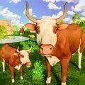 狂野公牛模拟器
